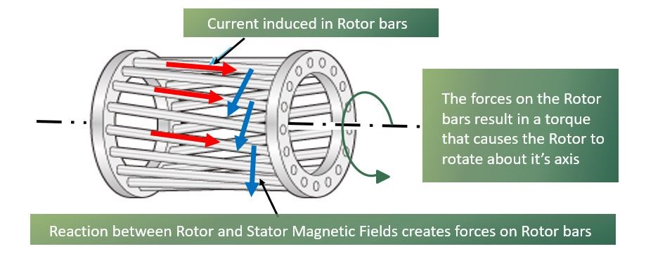 Squirrel cage induction motor working principle